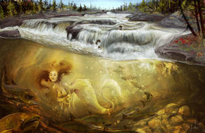 Le Saumon - The Salmon by Vanoushka