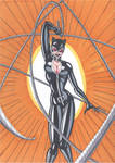 Catwoman- Whip it Good