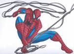 Web Slingin' Spider-Man