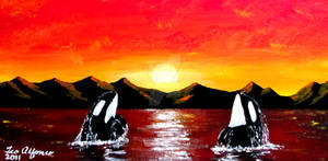 ORCA WHALES AT SUNSET