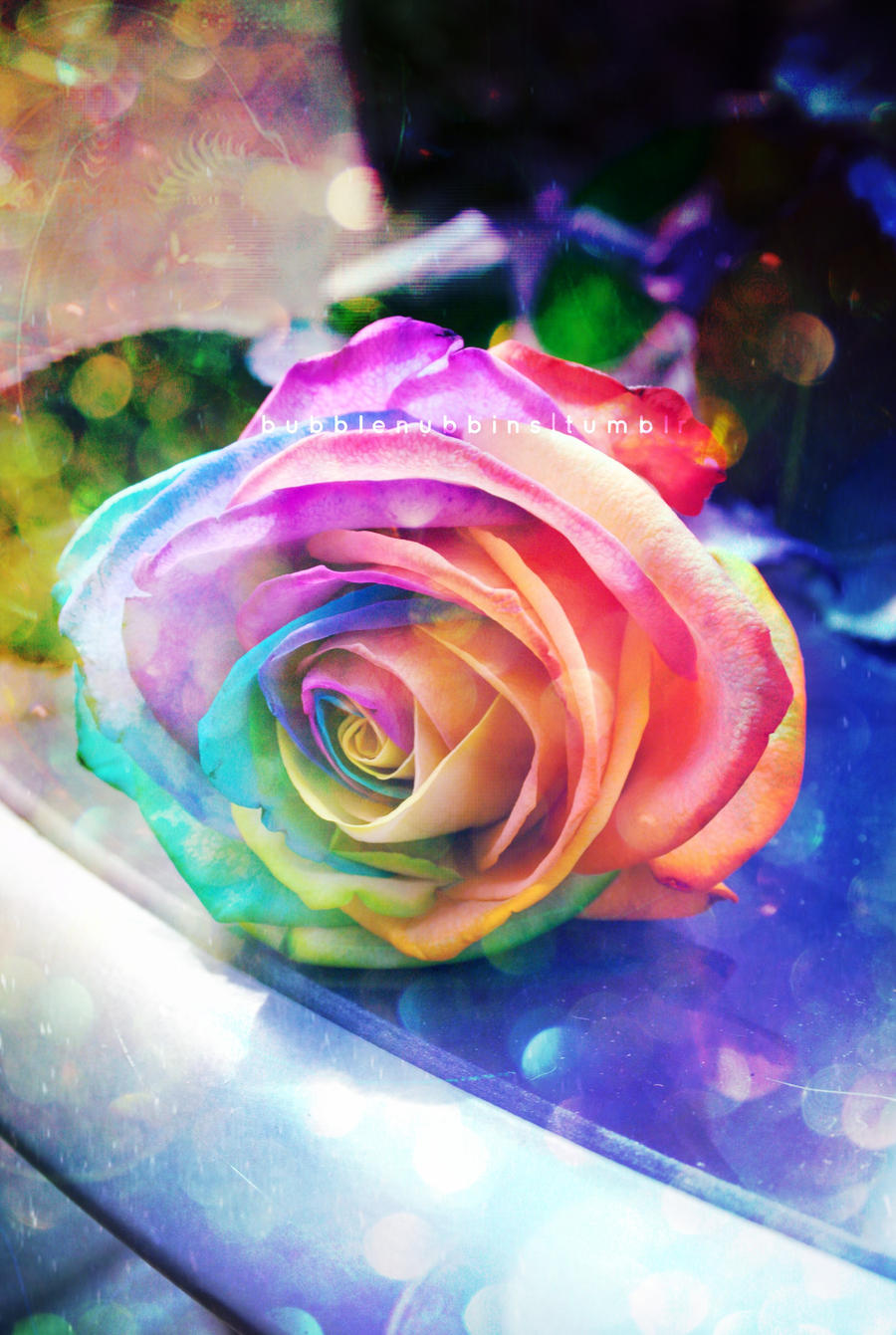 Rainbow rose by bubblenubbins on deviantart for How much are rainbow roses