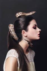 Python Series - Dumeril's Boa II