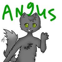 Angus the floofy cat by Mawairu