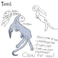 Terrei rough guide (beta) by FionnaBun
