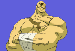SFZA3 Sagat Victory HD Restored by Apoklepz