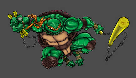 Mike Bowden's Michelangelo Colored