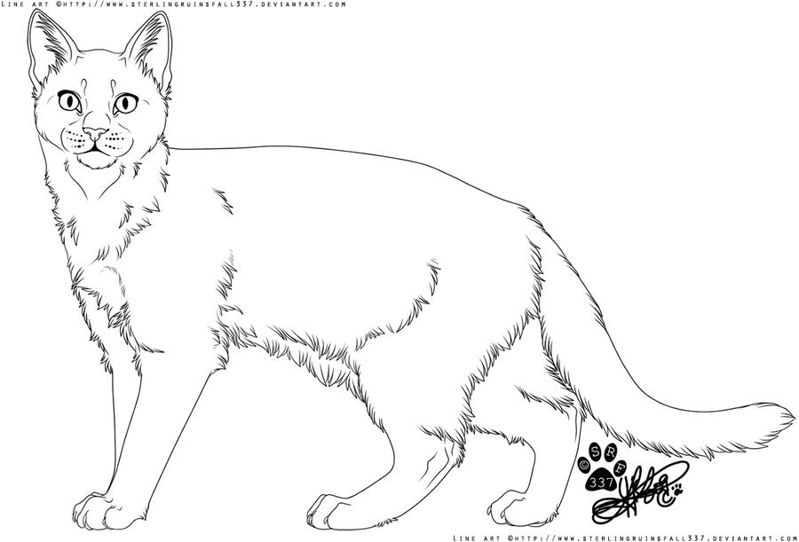 Line Art Of Cat : Cat line art