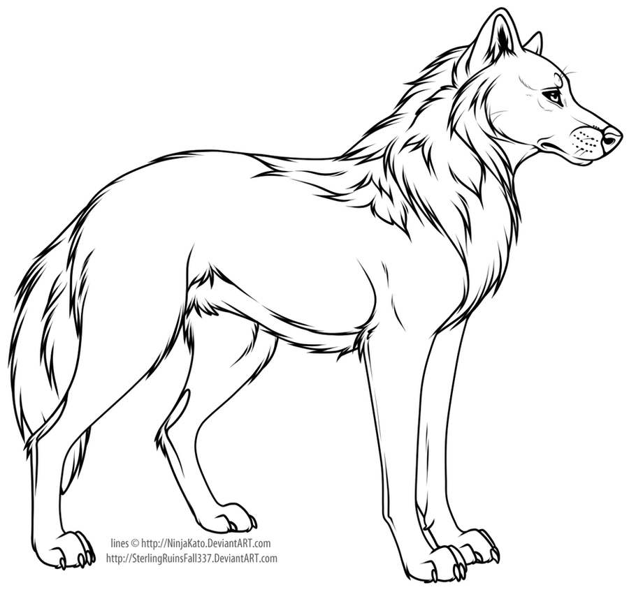 Cartoon wolf or dog line art by ninjakato on deviantart for Anime puppy coloring pages