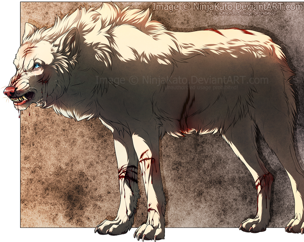 ''And so it begins... The 'rite' of the scars'' by ...