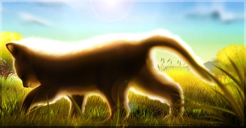 Fuzzy Sunshine by NinjaKato