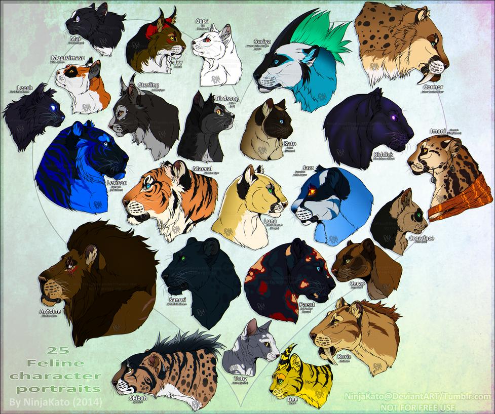 25 felines by NinjaKato