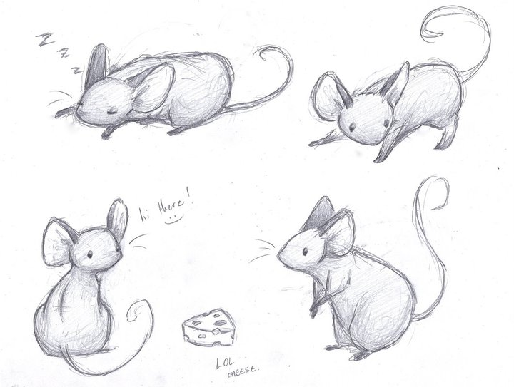 Line Drawing Mouse : Mice sketches by sleighbelles on deviantart