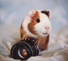 Little photographer by Cvet04ek
