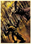 Wolverine vs Sabretooth-color