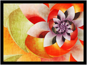 Flower 9 by Wsandid