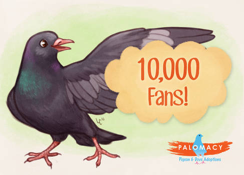 Palomacy 10k Facebook Fans