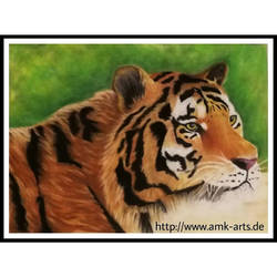 Pastel Tiger by A-M-K-Arts