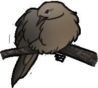 Mourning Dove by PlaidBird