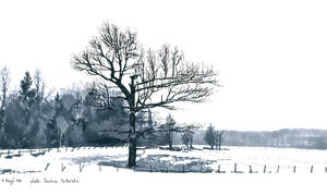 Reproduction - The tree 12