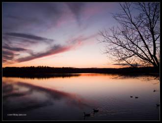 Last Taste of Sunset by Mogrianne
