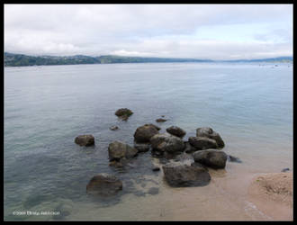Wellington Beach Afternoon by Mogrianne