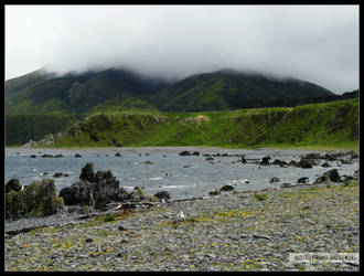 New Zealand Shore Hills by Mogrianne