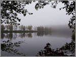 Misty Waterway