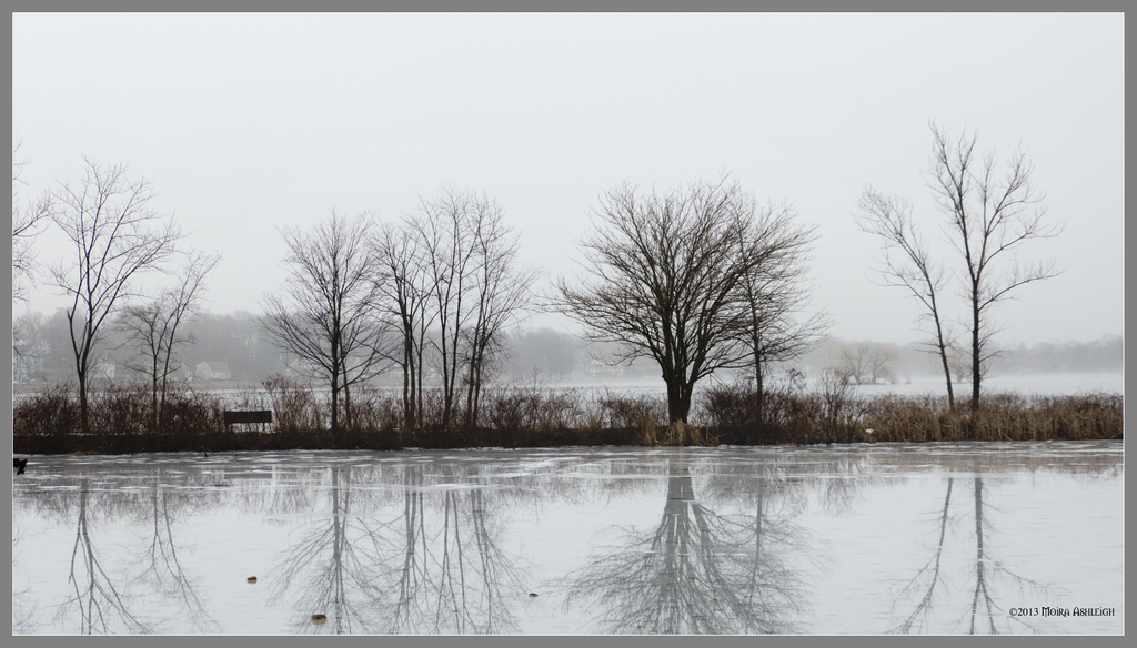 Looking across the ice by Mogrianne