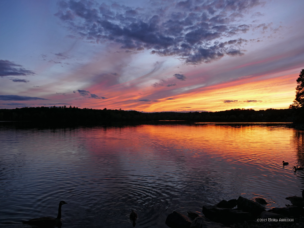 Sunset with waterfowl by Mogrianne