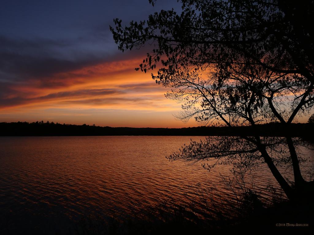 Good night in orange by Mogrianne