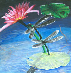 Waterlily and Dragonflies