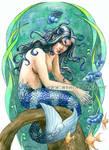 Ciclid Mermaid
