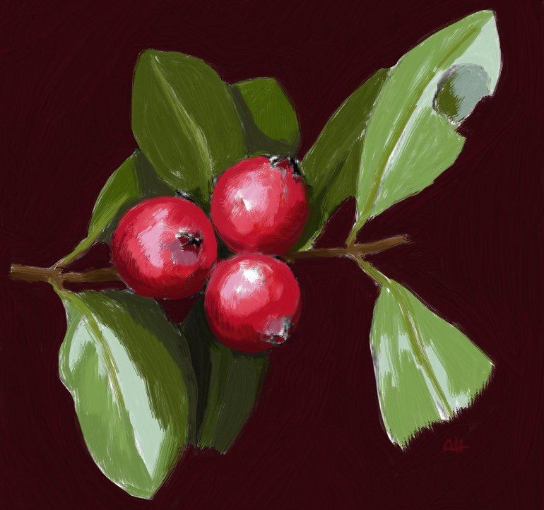 Strawberry Guava by AquariusWolf on deviantART