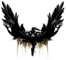 the bird by kluzehellion