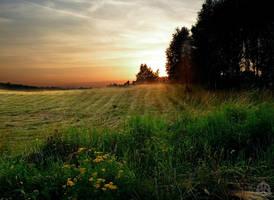 Summer Night by Luinloth