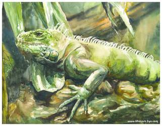 The Green Iguana by WINGLESSxANGEL
