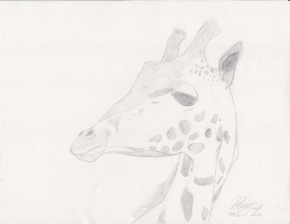 Giraffe by RedWolf75