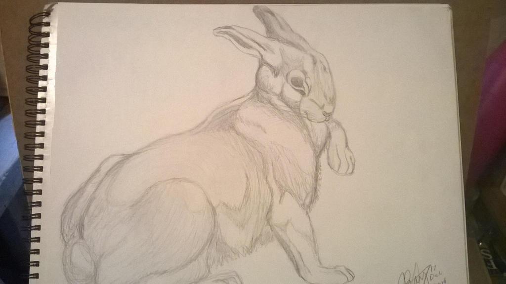 Rabbit by RedWolf75