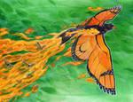 Monarch Phoenix