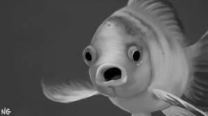 BW Study - funny goldfish