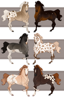 Horse Adoptables b3 by Completeperfection