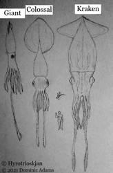 Cryptids Reimagined: Kraken