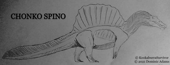 Chonko Spino
