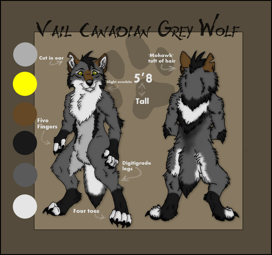Vail reference sheet 2014 by Vailwolf