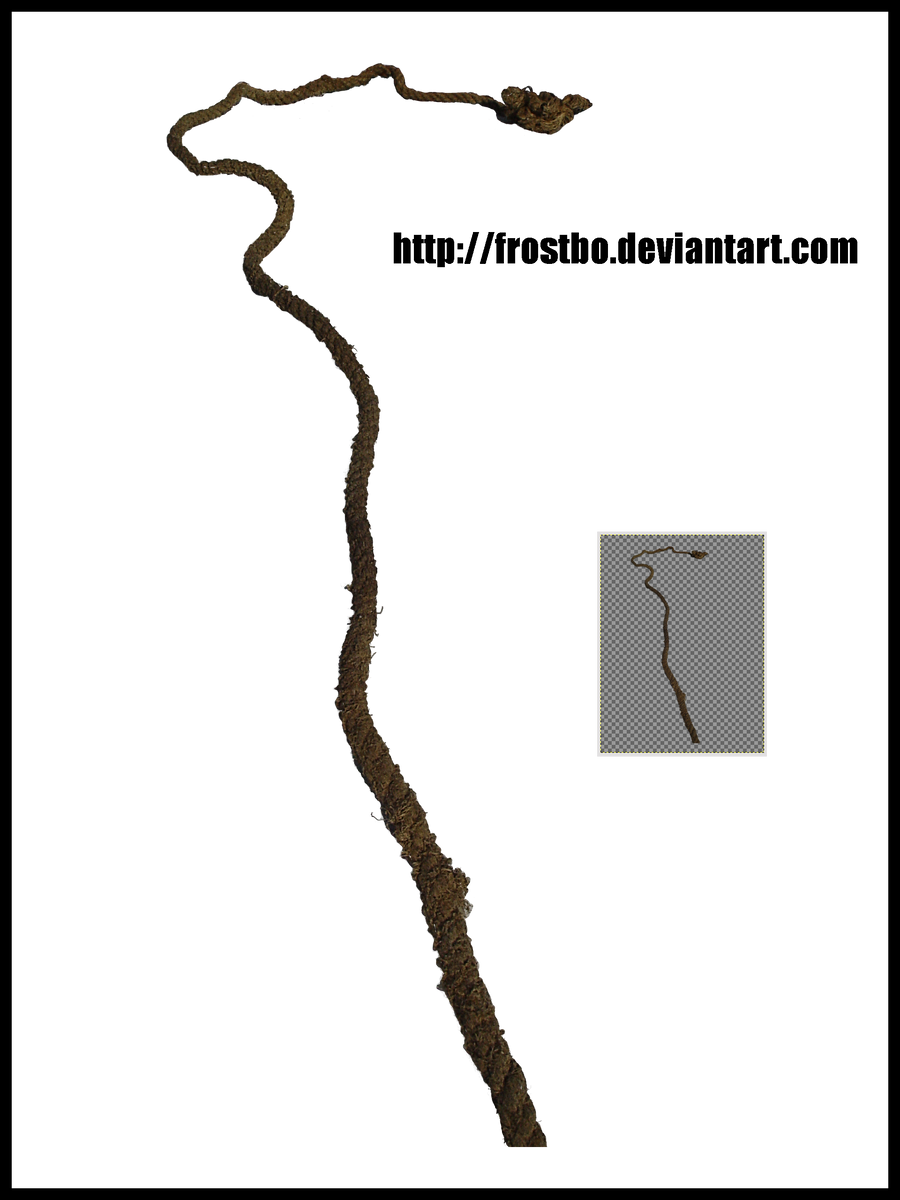 Rope Stock 01