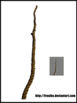 Rope Stock 04