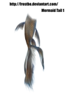 Mermaid Tail 01
