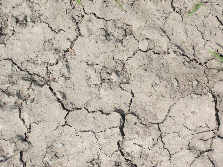 Mud texture 01 by FrostBo