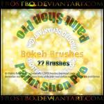 Paint Shop Pro Bokeh Brush 22 Brushes
