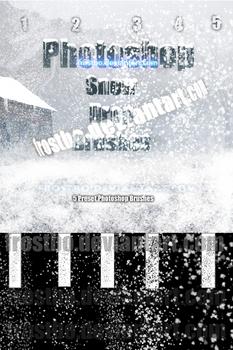 Snow Drop Photoshop SET II 2012